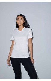 AAPL356 WOMEN'S SUBLIMATION CLASSIC SHORT SLEEVE V-NECK T-SHIRT