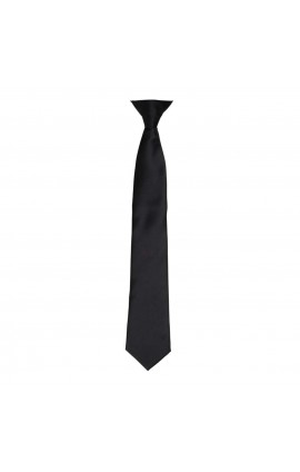 PR755 'COLOURS' SATIN CLIP TIE